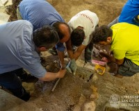 Scoperte antiche sepolture - SGF25_-_07_luglio_2020_818eb53ac18604b86365acde110bac9d