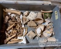 Scoperte antiche sepolture - SGF5_-_13_luglio_2020_f3e4a186b39001e96eede3fbbffe4449